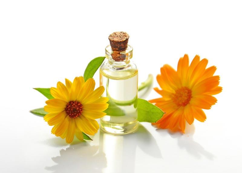 cuáles son los mejores aceites para la piel del rostro, cara, cuerpo