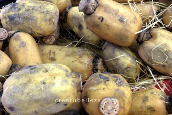 Qué es la raíz de loto, beneficios para la salud, dónde comprarla y cómo prepararla.